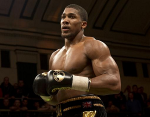 2014 boxing awards